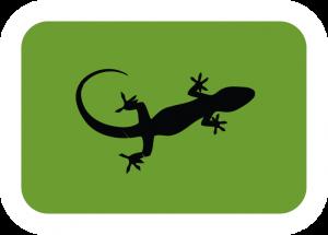 Reptile-Icon